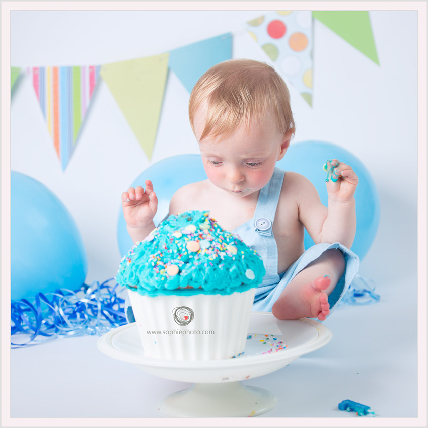 Cake Smash 1 year old photos