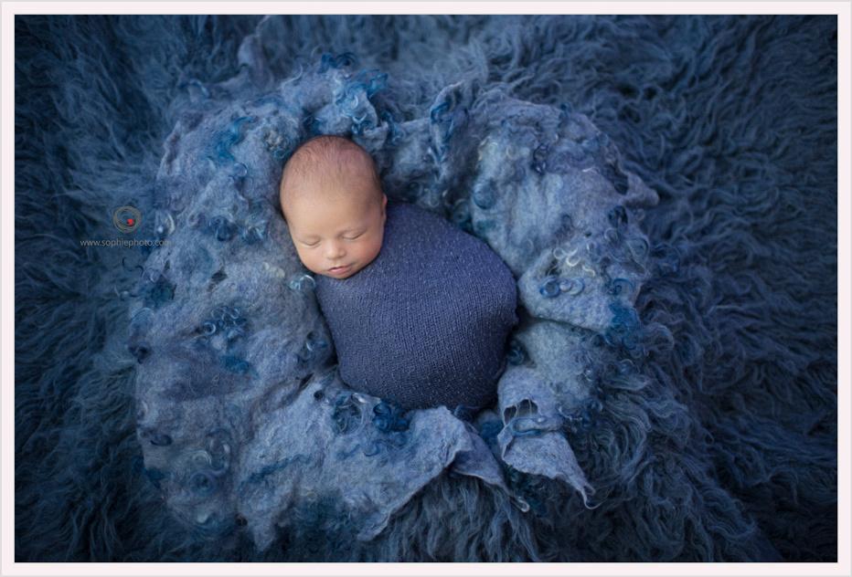 Newborn photographer Victoria BC, SophiePhoto